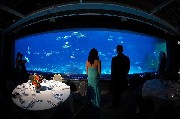 Adventure Aquarium Events Catering Philadelphia