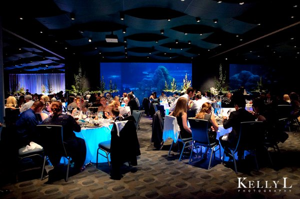 Adventure Aquarium Events Catering Reviews Southern