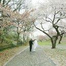 130x130 sq 1210188257497 bridegroomwalkway