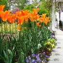 130x130 sq 1452538950285 the frelinghuysen arboretum morris township nj 10