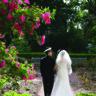 96x96 sq 1452538241242 the frelinghuysen arboretum morris township nj 6