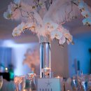 130x130 sq 1343139531537 whiteorchidfeathercenterpiece