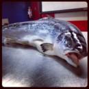 130x130 sq 1445793678240 salmon