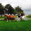 130x130 sq 1431792916807 horse and carriage at house plantation in houston