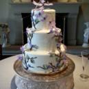 130x130 sq 1415837894358 dragonfly wedding cake