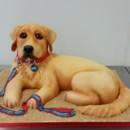 130x130 sq 1468428890343 golden retriever dog cake collar leash