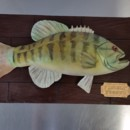 130x130 sq 1468428937372 green trout fish fishing wooden planks cake