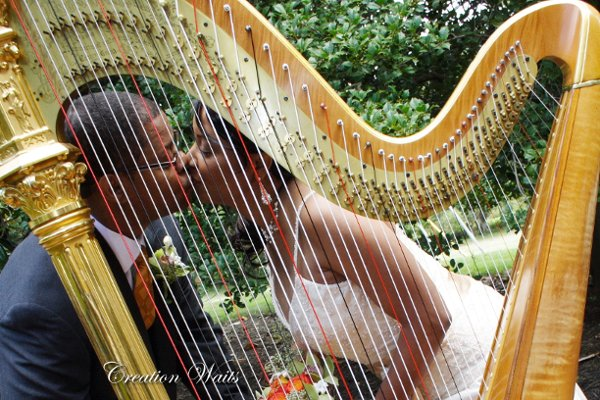 photo 2 of Cheryl Roeske Harpist