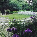 130x130_sq_1329414882437-ceremonylowergarden