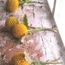 130x130 sq 1381884349040 boutonniere   yellow crespedia