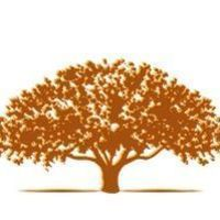 220x220 sq 1486924365 6fcfcb2540332902 etree2 gold brown highlight1 200px