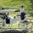 130x130 sq 1316713695664 weddingcarriage