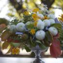 130x130 sq 1396977767664 bella fiori dahlia