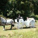 130x130 sq 1264978717742 wedding81206011