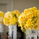 130x130 sq 1373602298997 tall yellow topiary centerpiece with bling