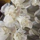 130x130_sq_1340274822272-flowers001