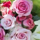 130x130 sq 1343332150595 flowers