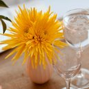 130x130_sq_1319831943098-flowers2