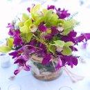 130x130 sq 1308952386125 orchidshellflowerarrangement16