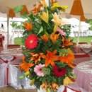 130x130 sq 1314766723985 flowers1
