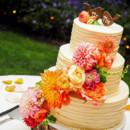 130x130 sq 1419893137424 aj cake samples 105