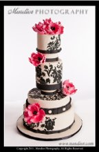 220x220_1309228257982-weddingcake06140091