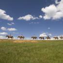130x130 sq 1463067532543 horseback