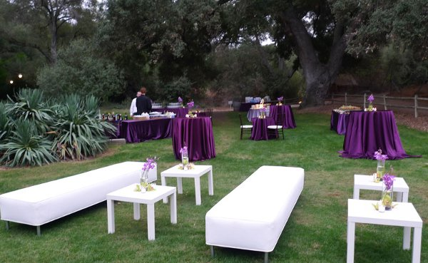 photo 3 of Vini's Party Rentals
