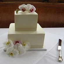 220x220 sq 1232082071578 cakes wedding 13