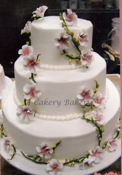 photo 14 of Cakery Bakery