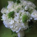 130x130_sq_1289424522016-greenweddingbouquet