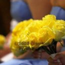 130x130 sq 1253133924759 bouquet