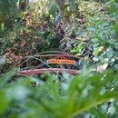 130x130 sq 1471961144 4fbcd631c2b5abdb raker florian heatherklinephotography 10 0 low