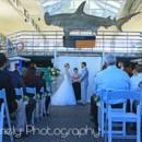 130x130 sq 1475686103923 shark tank wedding