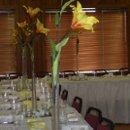 130x130_sq_1217385121644-receptionroom