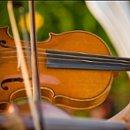 130x130 sq 1240170227468 violin300x300