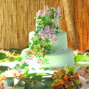 130x130 sq 1384650907652 orchid lime green cake aloha caterin