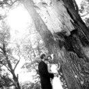 130x130 sq 1384537576935 big tree dramatic light kiss smal