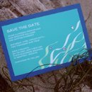 130x130 sq 1207844862851 tanielle savethedate