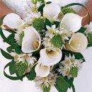 130x130_sq_1226430407007-cal_bride