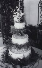 220x220 1189479083468 cake8