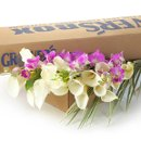 130x130 sq 1300899626850 diyweddingflowersorchidscallas500