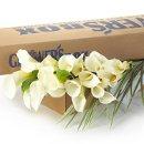 130x130_sq_1300899654006-diyweddingflowerscallalilies500