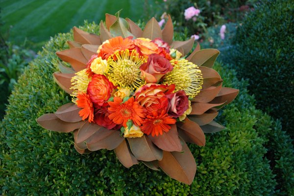 photo 4 of Ultimate Floral Designs