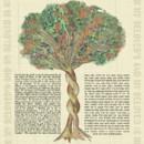 130x130 sq 1459986420575 trees embrace