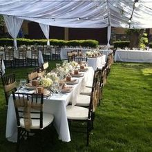Fig Tree Catering Co.
