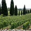 130x130 sq 1394052213061 franciacorta vineyards weddin