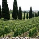 130x130 sq 1394052213061 franciacorta vineyards weddin