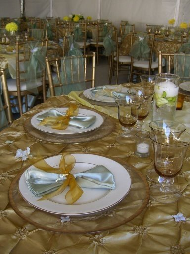 "photo 8 of ""Dress My Chair"" Party Rentals & Fine Linens"