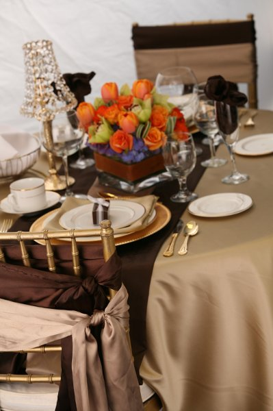 "photo 3 of ""Dress My Chair"" Party Rentals & Fine Linens"